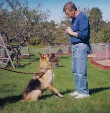 dog-obedience-using-hand-signals