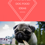9 home made dog food ideas